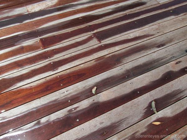 patterns of rain on my verandah