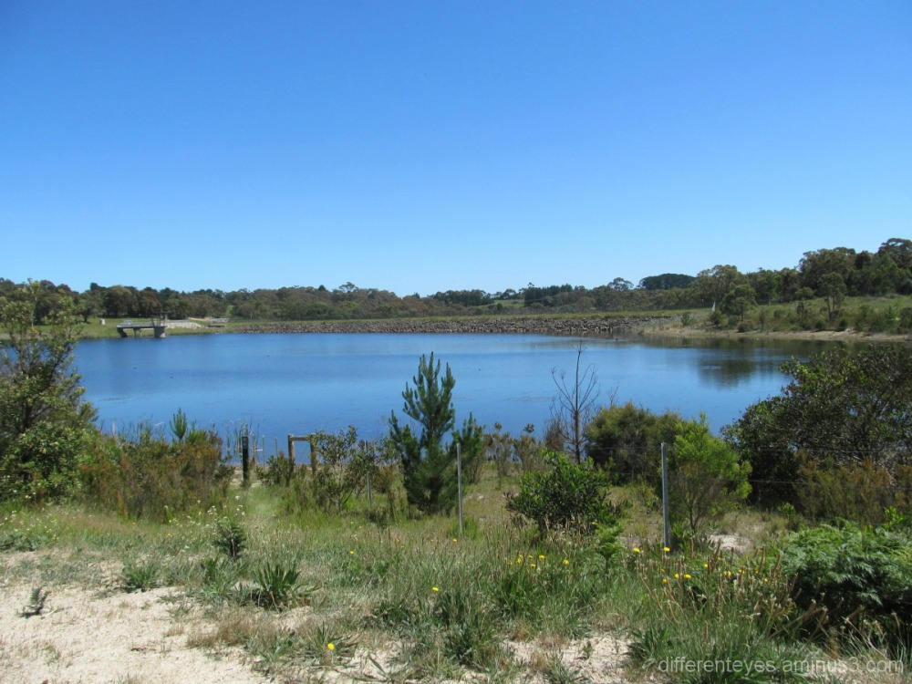 Devilbend Reservoir is now a nature reserve