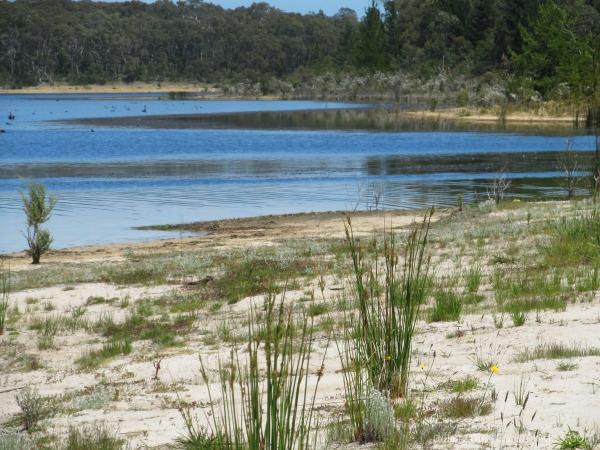 Devilbend Reservoir is now a nature reserve