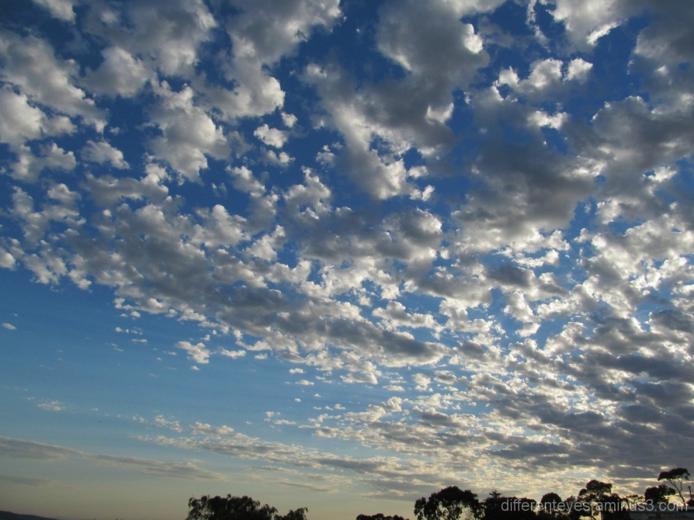 Morning summer skies in the Dromana Hills
