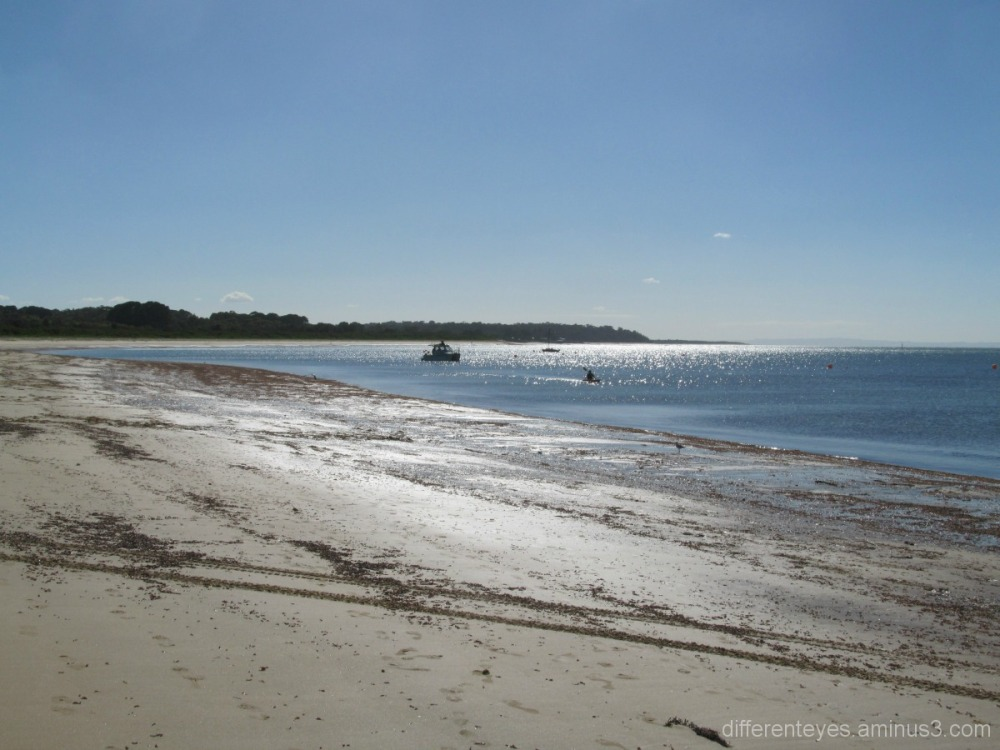 Balnarring Beach on a summer morning