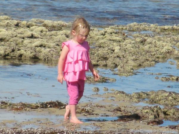 Child on Balnarring Beach on a summer morning