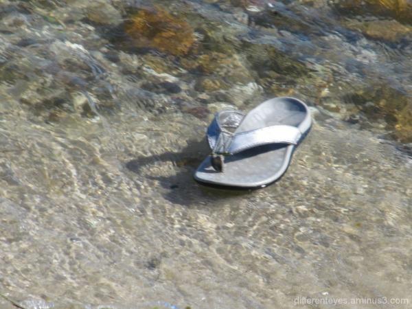 single shoe in water at Rosebud beach