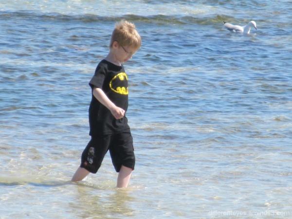Rosebud beach, child and a bird
