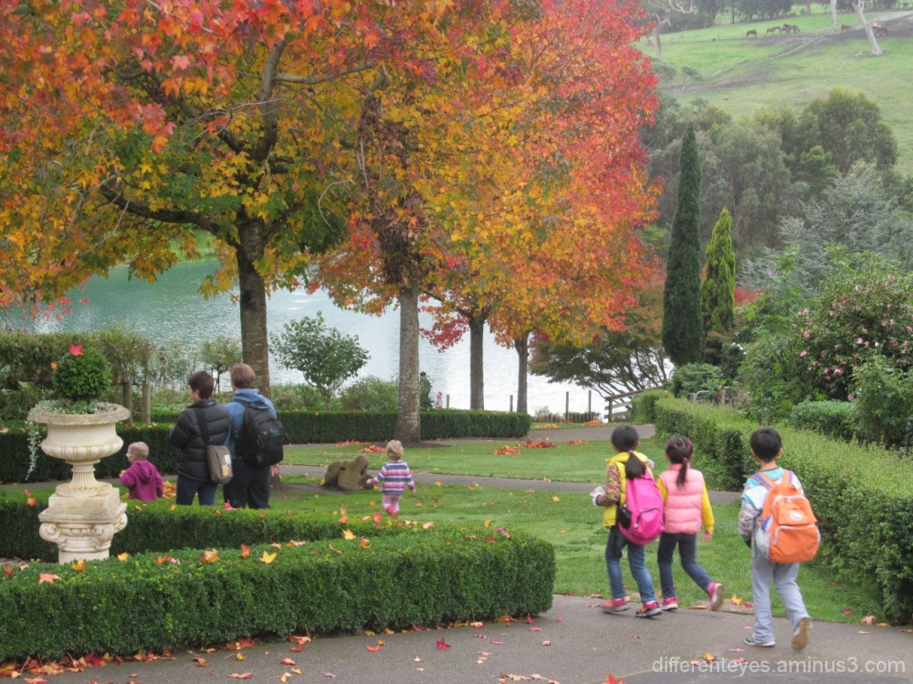 autumn view of the Enchanted Maze Garden