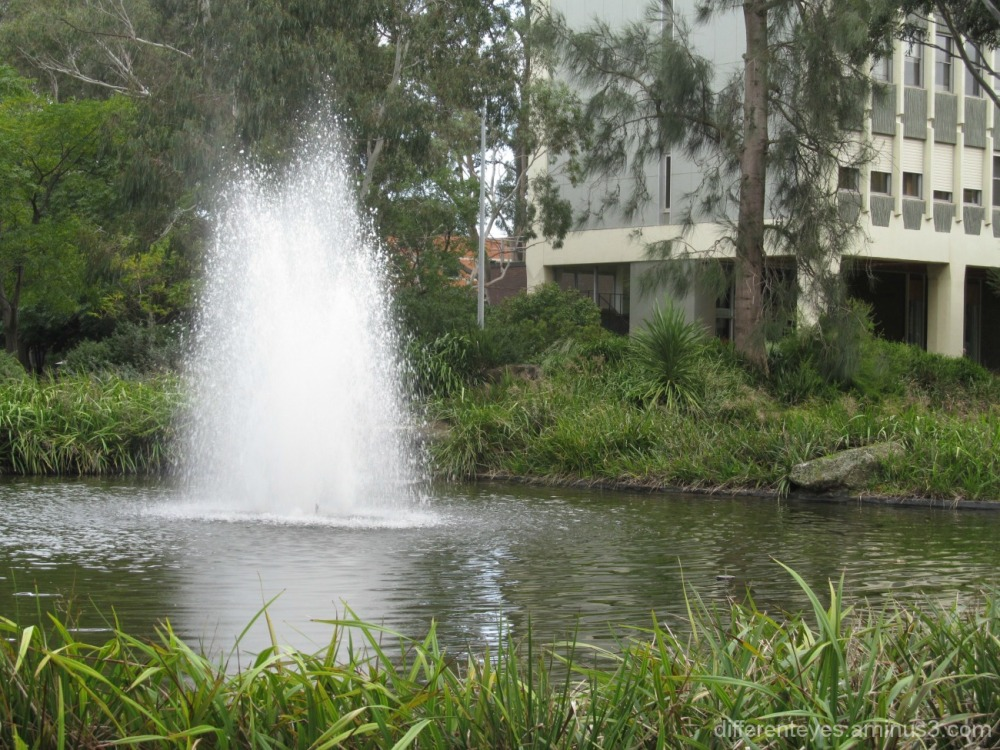 fountain at Monash University