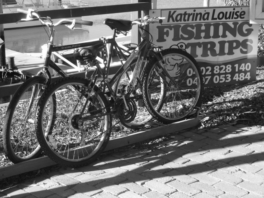 monochrome bikes and sign at Hastings marina