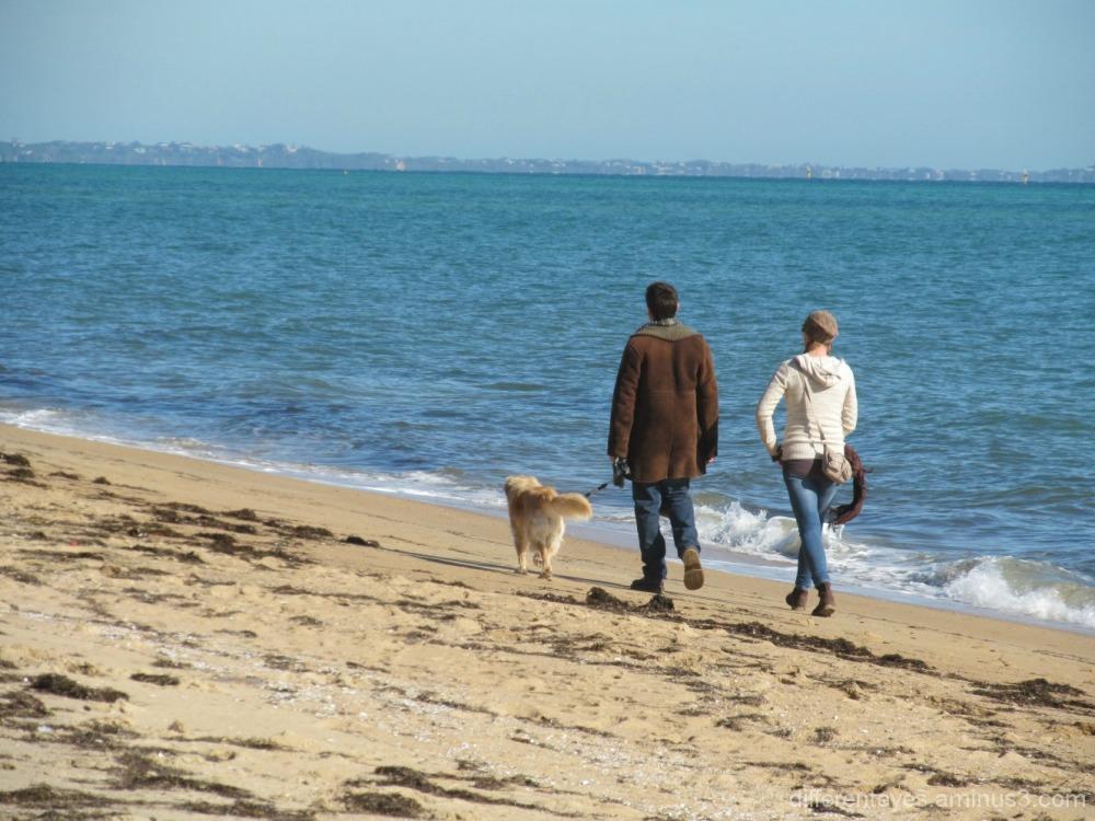 Dromana beach
