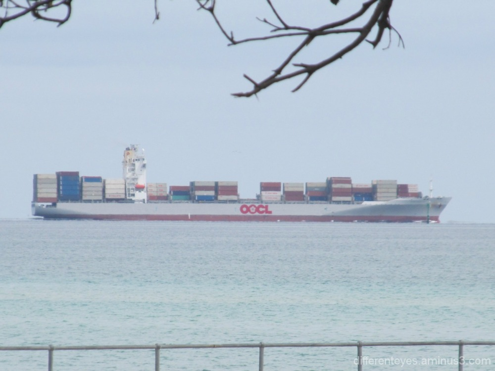 cargo boat passing Dromana...