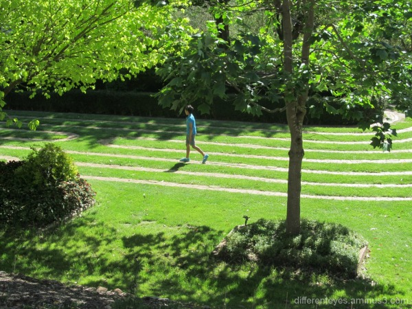 Enchanted Maze Garden grass maze at Arthurs Seat