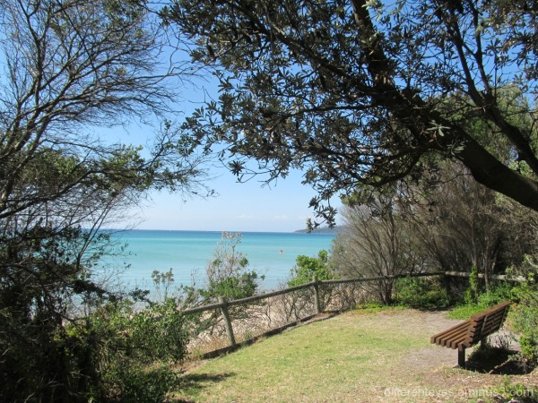 a viewing place at Dromana beach