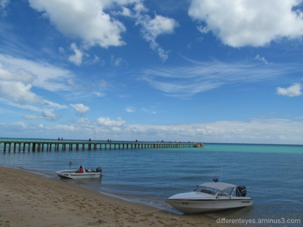 a view of boats from Dromana beach