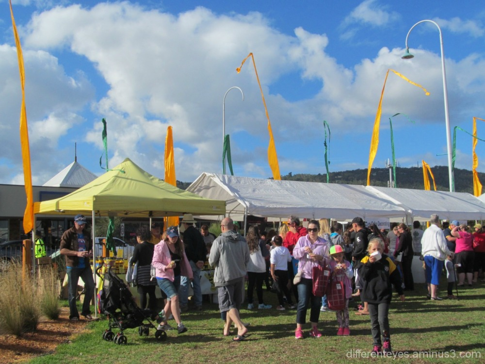 2015 Australia Day crowds in Dromana