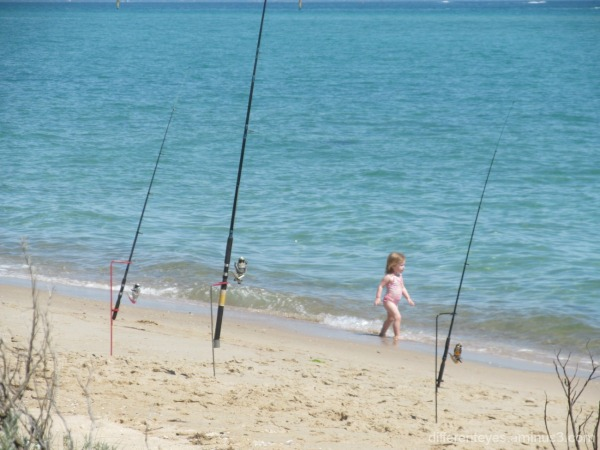 Dromana beach and child and fishing rods