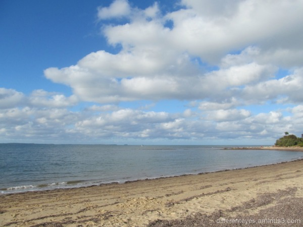 autumn view of Balnarring beach