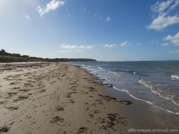 autumn view of Balnarring beach waters