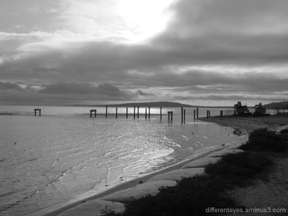 black and white view of Rosebud beach
