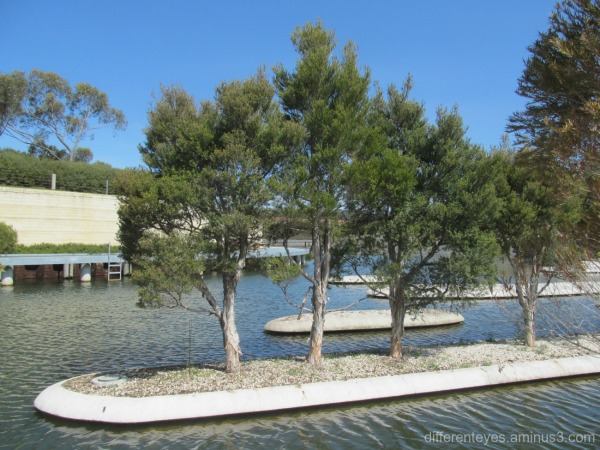 water feature at Cranbourne Botanical Gardens