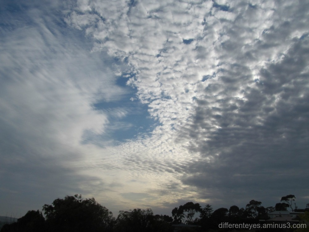 skies over Dromana Hills