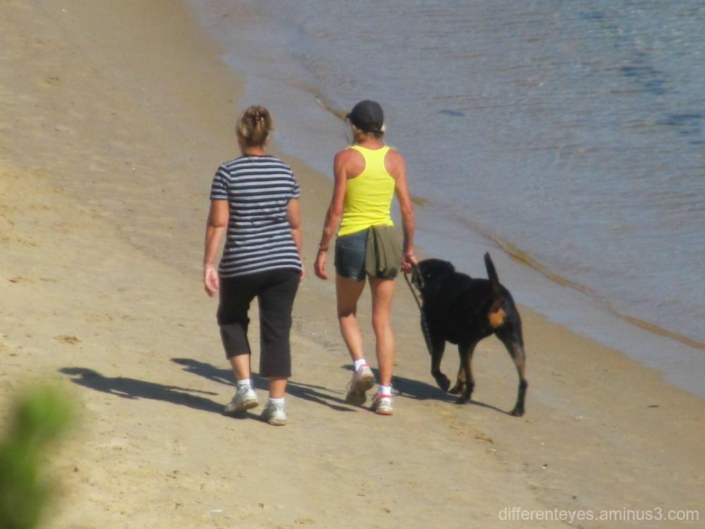 people and dog on Mornington beach...