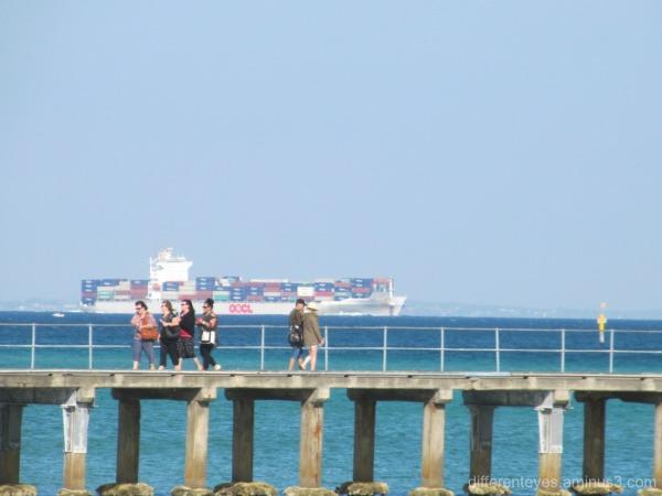 cargo boat passing Dromana pier