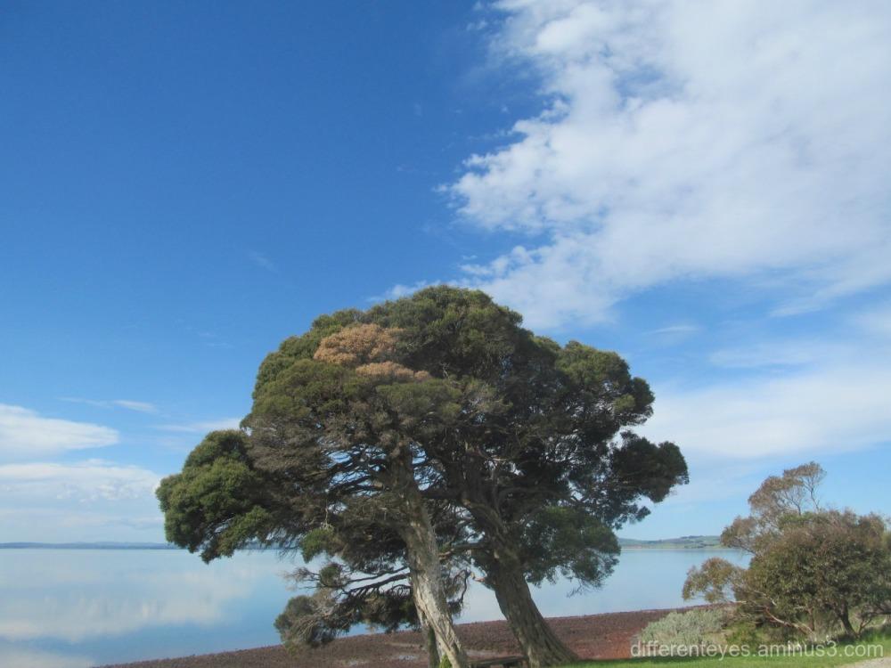 Churchill Island view