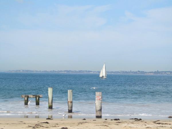 Queenscliff beach view