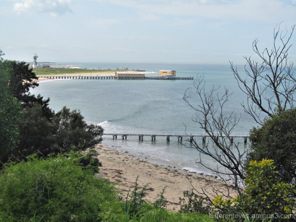 view from Queenscliff of The Rip
