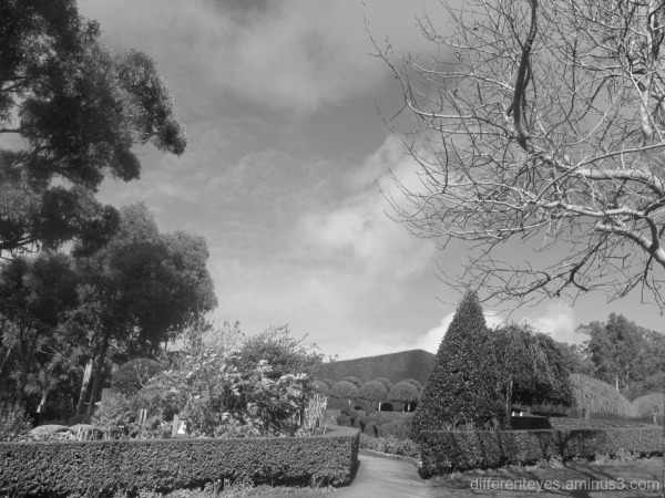 view of Enchanted Garden at Arthurs Seat