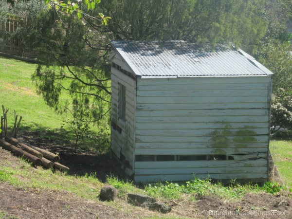 old shed in the Dromana Hills