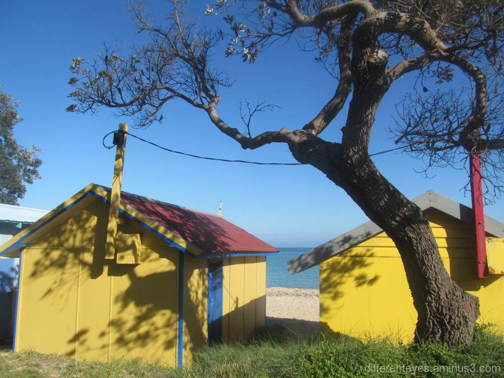 shadowy beach huts at Dromana beach