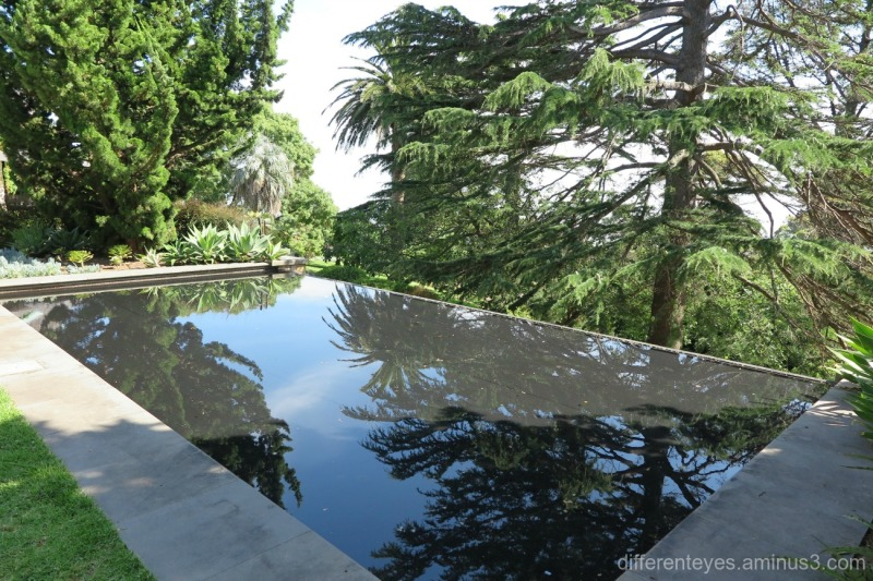 water feature at Heronswood House in Dromana