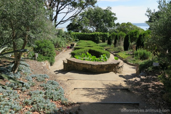 Heronswood House gardens in Dromana