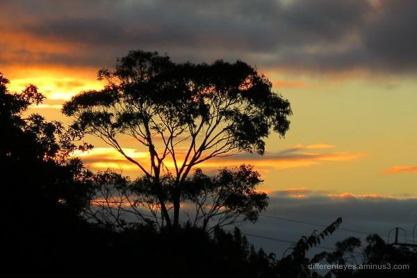 autumn skies over the Dromana Hills
