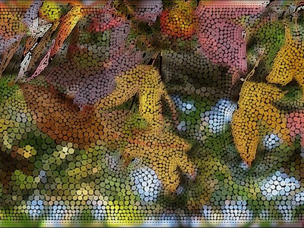 surreal autumn leaves
