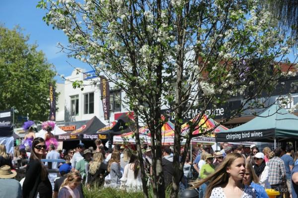 Mornington Spring Festival street