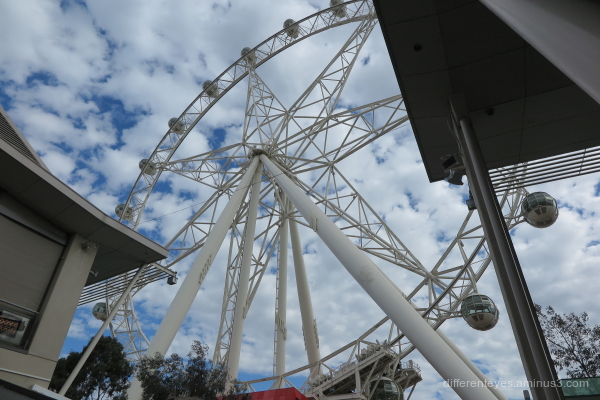 Melbourne Star in Melbourne