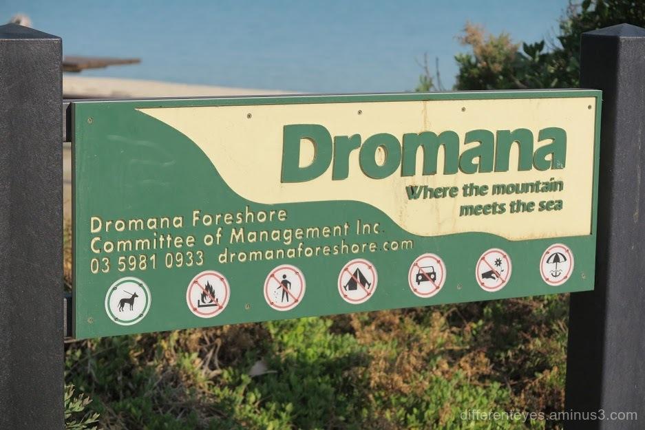 Dromana foreshore sign