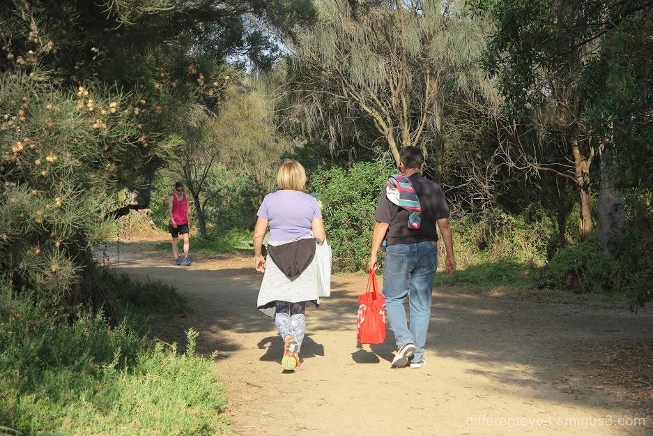 Dromana foreshore trail