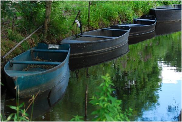 les barques dans la Brière