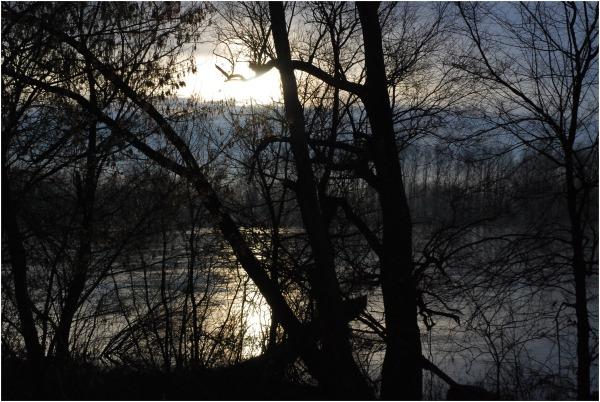 un soir sur la Loire, Nièvre