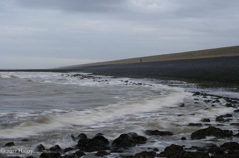 zee sea zeewering hondsbossche