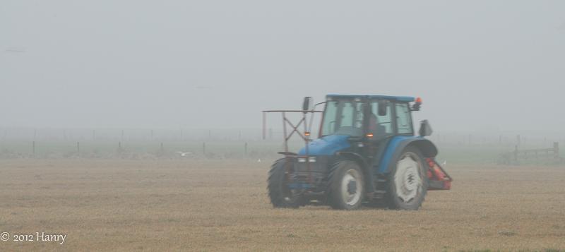 mist meeuw tractor fog gull