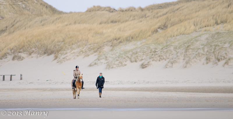 strand paardrijden duinen horse riding beach dunes