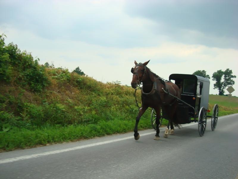 Amish County!