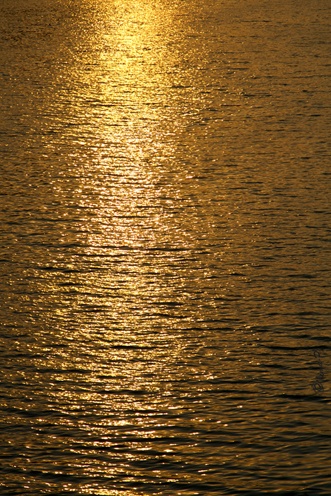 golden reflect