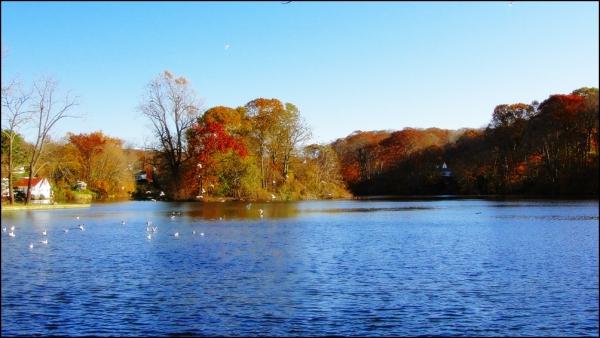 Fall over the lake