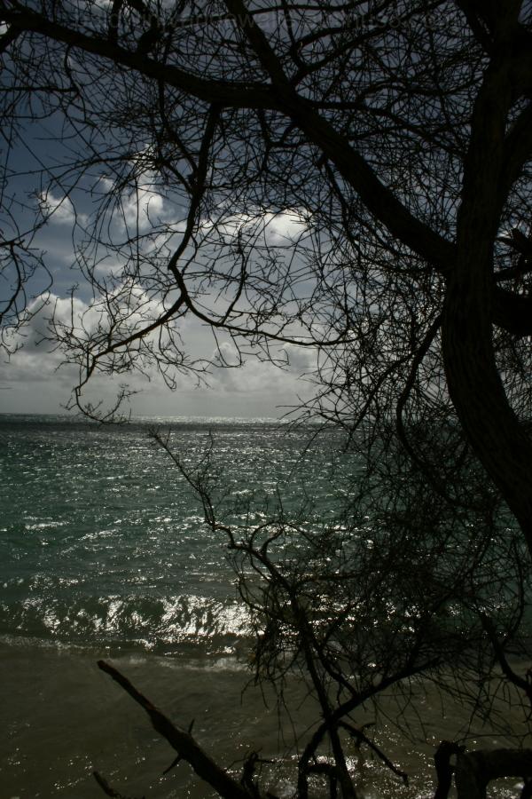 Punta Brava II