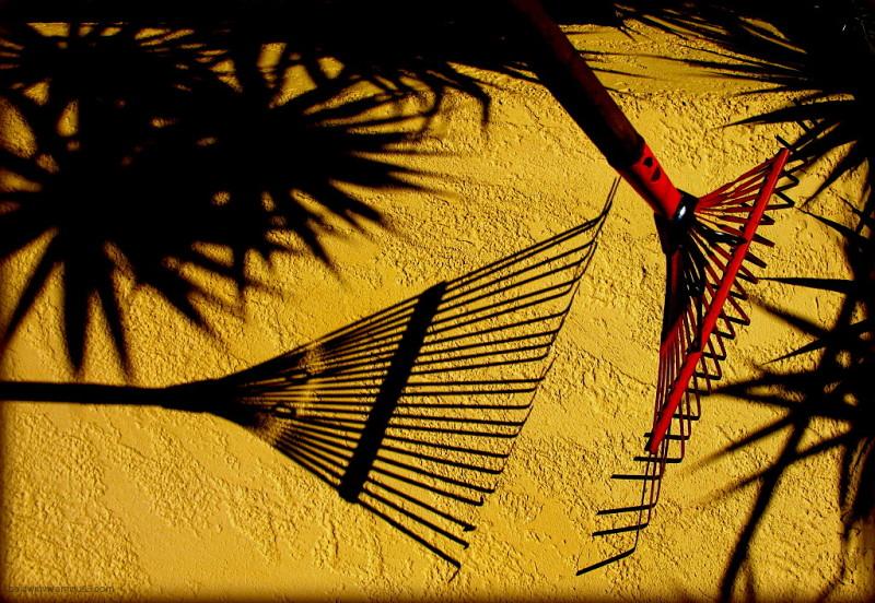 Raking shadows ...