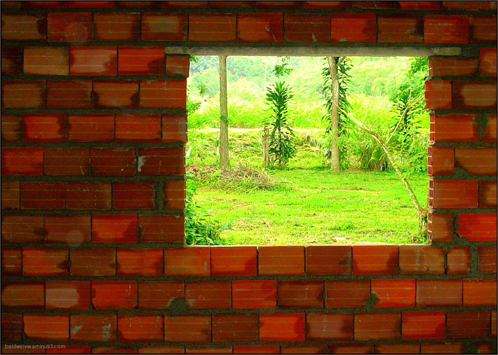 Framing the view ...